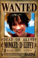 Monkey D. Luffy Cosplay 1 by Valentine-Fair