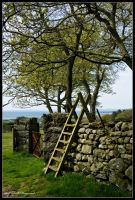 Country Stile by mym8rick