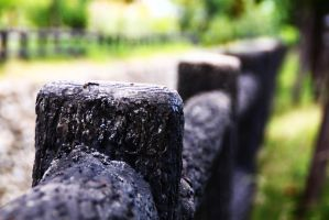 Wooden Fence. by abbychunga