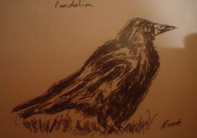 The Rook by oreillysarah