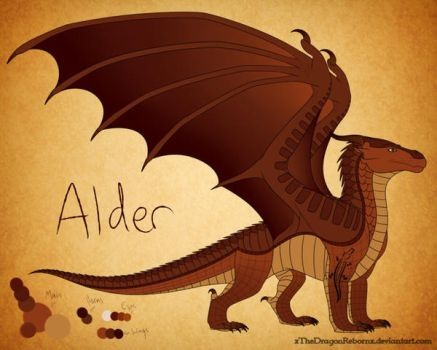 Alder Reference by firemoon26