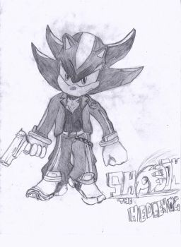 Shadow the Hedgehog-with biker like clothing by cboxninja1994