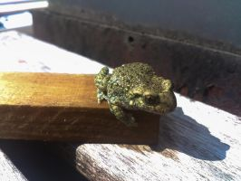 Little Frog by ColdMarch