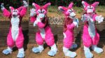 Lucky Corgi Fursuit by LobitaWorks