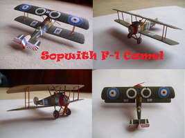 Sopwith F1 Camel by Teratophoneus