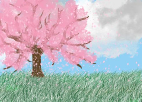 Cherry tree in the afternoon by Xwaterbender-of-funX