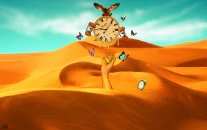 desert time by LEX2FLEX