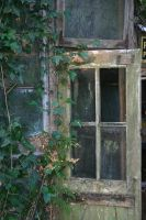 green house stock 2 by rustymermaid-stock