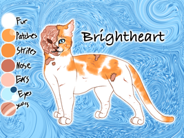Brightheart of ThunderClan - Trail of Ashes by Jayie-The-Hufflepuff