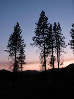 High Sierra sundown by caman213
