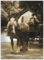 Horse and carriage by smeghead1976