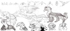 Gryphon in Flight by Sandora