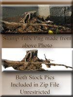 Stump Tube with Original Photo Pack by WDWParksGal-Stock