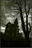 The mansion by rhipster