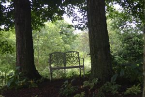 Bench 1 by cstarr-stock
