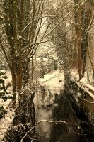 Winter Stream by Seqbre