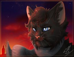 Sherlock as a Cat by RussianBlues