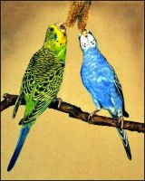 Drawing- Budgies by Ennete