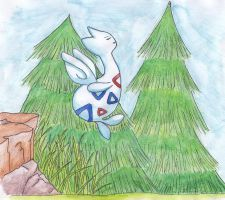 Togetic tries to fly by Cita-la-Star