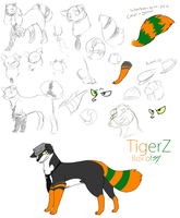 Planning new design by TigerZ-Box-of-JOY