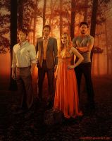 True Blood - Fall (Bill, Eric, Sookie, Alcide) by riogirl9909