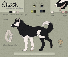 Shesh Charatcer Sheet - Commission. by Eredhys