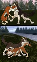 Caught a coyote by ShadowDHusky