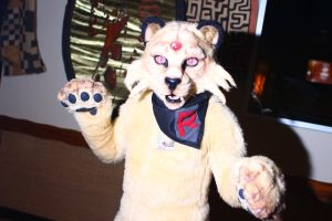 ColossalCon 2014 - Persian by VideoGameStupid