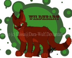 Wildheart Ex-bloodclan warrior by Dara-Wulf