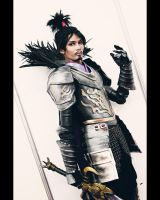 Oda nobunaga Samurai Warriors 2 by carlosdouglas
