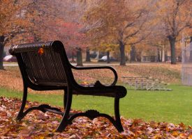 A Seat in the Breeze by GhostingFish