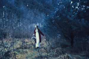 677 - red riding hood by SlevinAaron