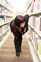 Library 14 by honeyhalliwell