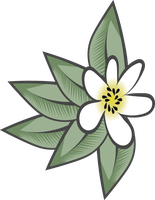 Free Frangipani Vector by CardinalCompanion