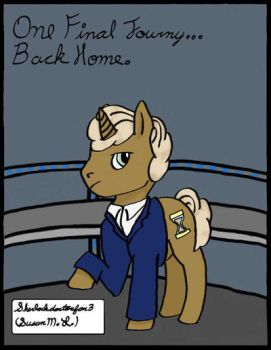 Doctor Whooves Cover by WholockFan33