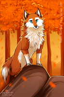 Autumn Forest by Rashuu