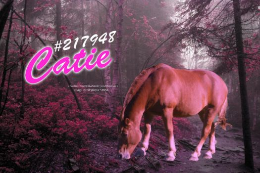 Catie #217948 (HP) by jo-without-an-e