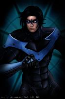 Nightwing by Crischromatic