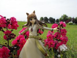 Holo in the garden. by HolosLove