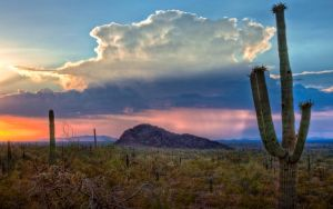 Arizona Sunset by MattGranzPhotography