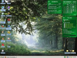 Current Desktop 12.11 by merigreenleaf