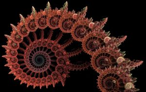 Octopus by deepbluerenegade