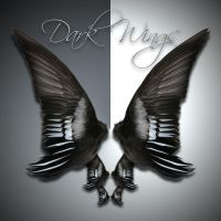 Dark Wings 2-2 by cocacolagirlie