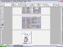 Sr. Project InDesign 4 by xRaeylx