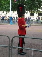 Coldstream Guards Officer by photodash