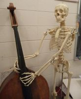 Skeleton and Cello Stock I by Melyssah6-Stock