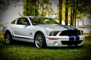 Ford Mustang shelby 500 by RockRiderZ