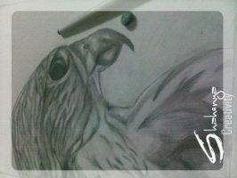 .. Falcon Sketch _ step 7 .. by Shahenya