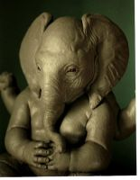 Baby Ganesh by barbelith2000ad