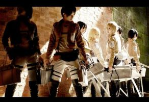 Attack On Titan Group by Mcosplay